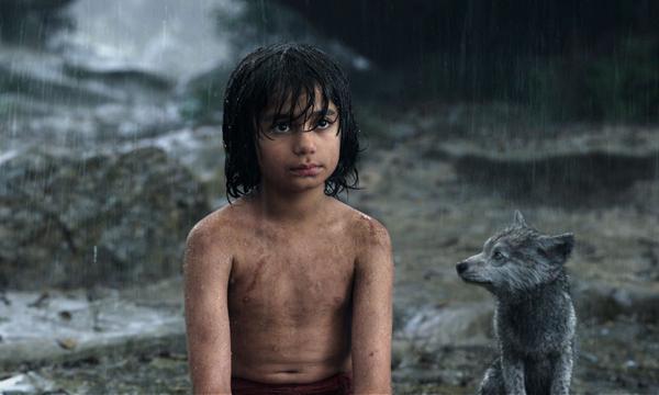5220_mowgli_main
